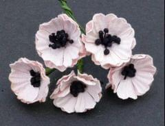 Poppy Flower with Pollens - Pale Pink