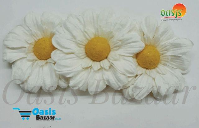 Sun Flowers Color White And Yellow. 14