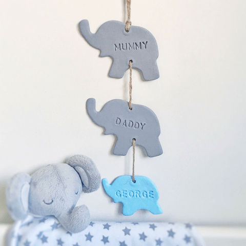 Elephant Family - Blue