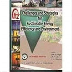 Challenges and Strategies for Sustainable Energy Efficiency and Environment