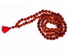 Purpledip Rudraksha Mala For All Rashis: 5 Mukhi Rudraksh 108 + 1 Beads of 7 mm size, 70 cm long (30043)