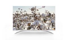 """43"""" Designer series 4K LCD TV"""