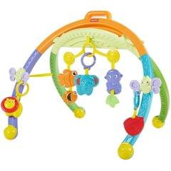 Fisher Price Folding Activity Gym, Multi Color