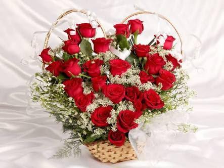 Anniversary Rose Flower