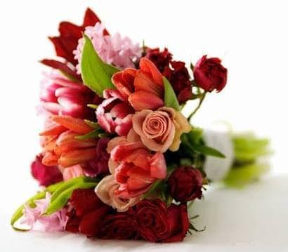 Fresh Flower 's