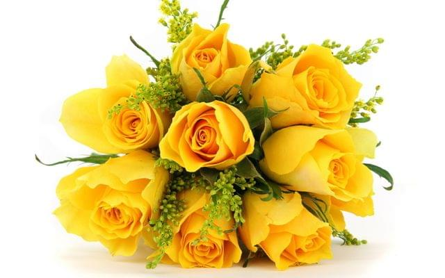 Enrich your love and friendship with yellow roses