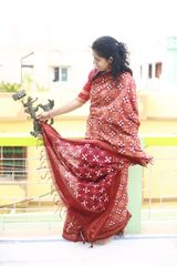 Pasapalli Saree in Light Brown and Red