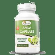 Amla Capsules (120 Counts) - 60 gms