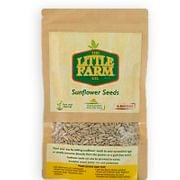 Sunflower Seeds - 100 gms (Pack of 2)