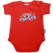 Little Firecracker T-shirt