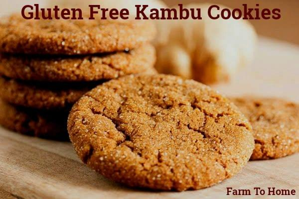 Farm To Home - GLUTEN FREE KAMBU/BAJRA COOKIES