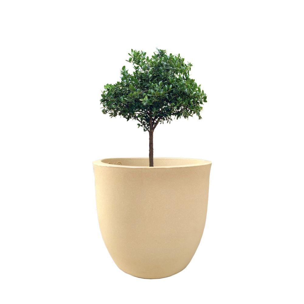 YUCCABE FOXB Pcup beige 12 Inches Planter