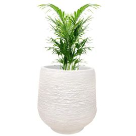 Yuccabe Italia 14 inches White up-Ston Round Planter