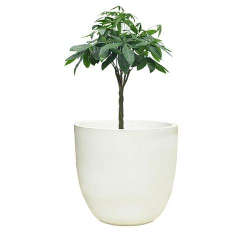 YUCCABE FOXB Pcup White 17 Inches Planter