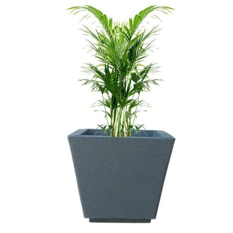 YUCCABE FOXB GK grey 16 Inches Planter