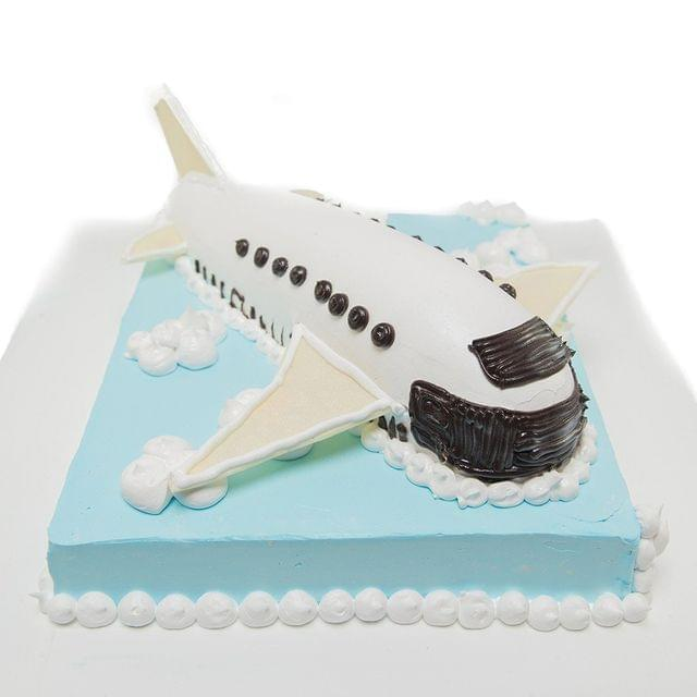 Fly in the sky - Aeroplane cake