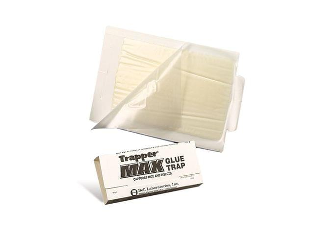 BELL | Trapper Max | Box of 72 | BELL0015-TL2586