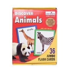Creative s Discover Animals