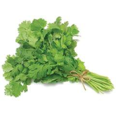 CORIANDER LEAF - 1 BUNCH