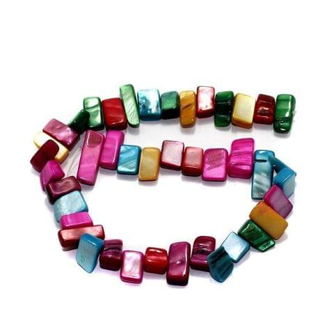 40+ Shell Beads Assorted 12-23mm