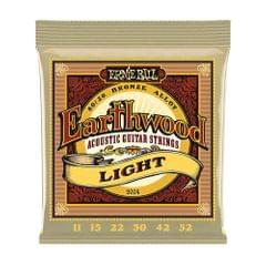 Ernie Ball 2004 Earthwood Light Acoustic Guitar Strings - 2004
