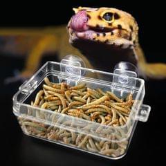 Reptile Anti-escape Feeder Plastic Food Bowl Water Dish for Lizard