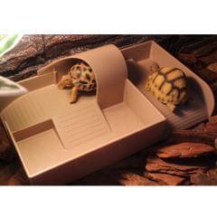Aquarium Reptile Turtle Pier Platform With Ladder Basking Plastic Durable