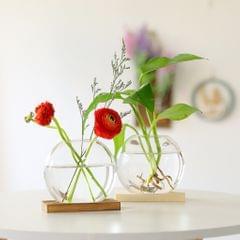 Hydroponic Glass Vase Desktop Glass Planter Home Office Decor Wood