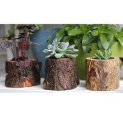 Tree Stump Wooden Flower Vase Succulent Plants Bonsai Pot Candle Holder M