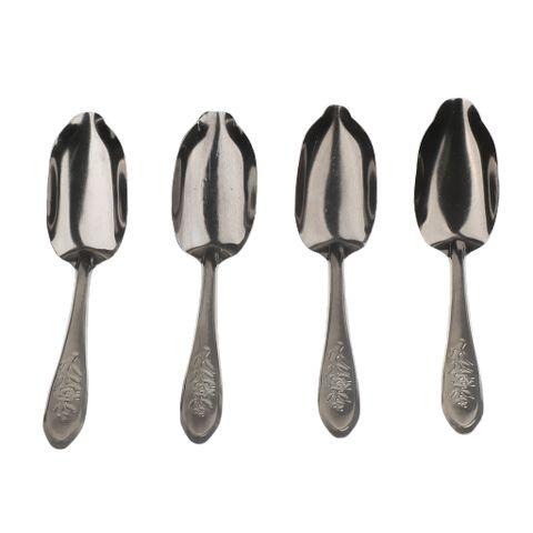 Bird Cockatiel Parrot Milk Powder Steel Metal Feeding Spoon Hand Feed Spoons