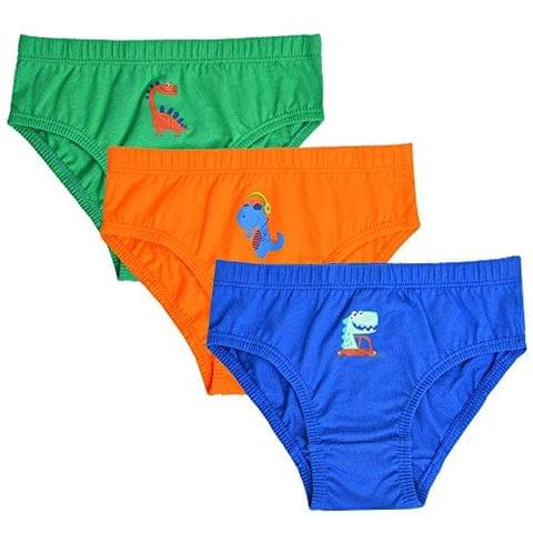 Charm n Cherish Cotton Brief with Dino Print (Pack of 3) BWBRI2