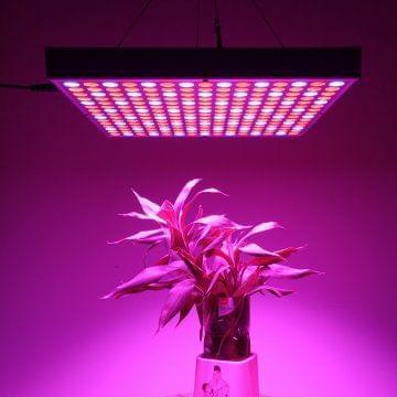 45Watt LED Grow Light
