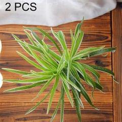2 PCS Artificial Plants For Plastic Flowers Household Store Supplies Decoration Sabaigrass With White