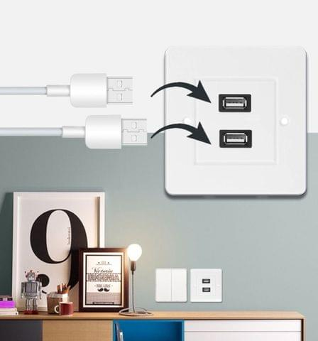 Dual USB 2.0 Female Plugs Home Wall Charger Plate Wall Plate Panel