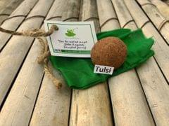 10 Plantable Tulsi Seed Balls with Seeds