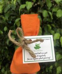 10 Plantable Marigold Seed Balls with Seeds