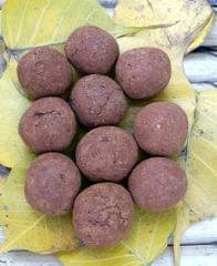 10 Plantable Tomato Seed Balls with Seeds